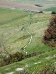 Sheep track