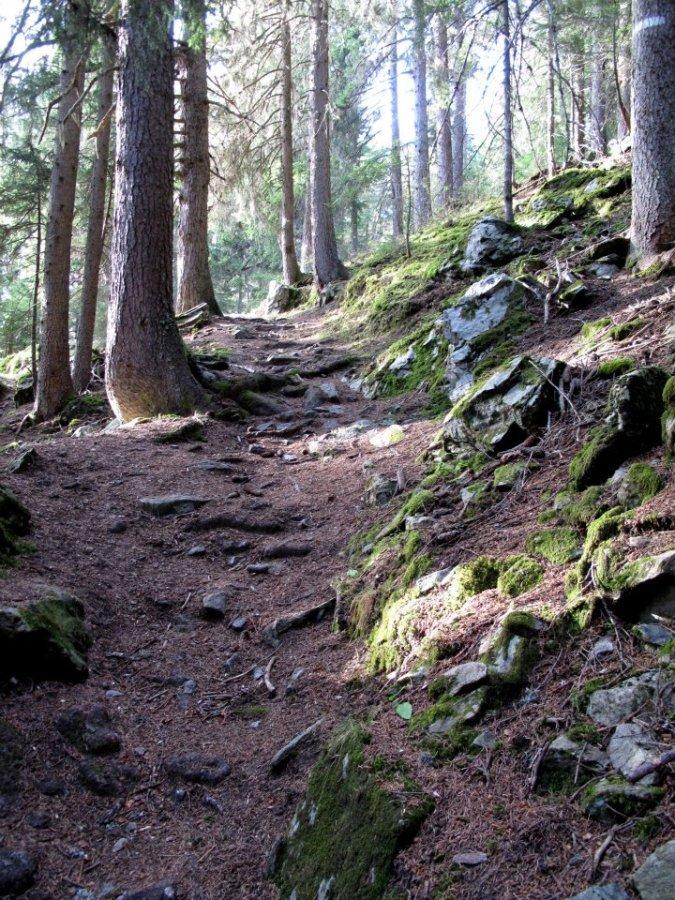 Chamonix single track