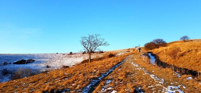 Frozen-ride-19-5